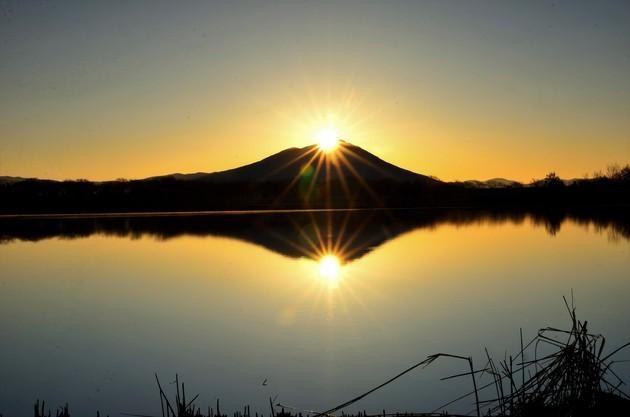 茨城県筑西市母子島遊水池
