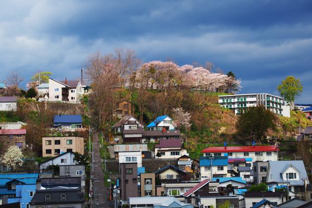 小樽市東雲町の水天宮神社境内