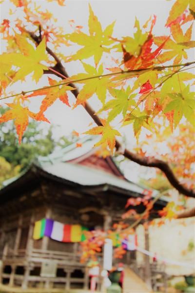埼玉県鳩山町