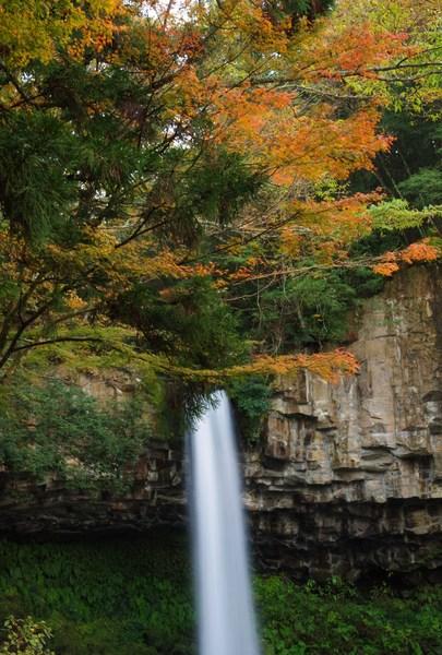 静岡県伊豆市 萬城の滝