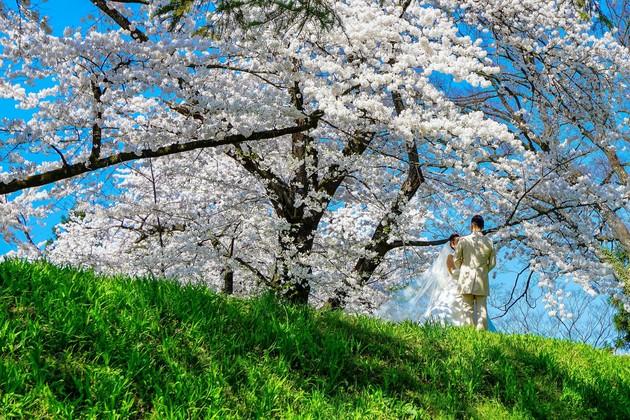 鶴ヶ城公園、福島県会津若松市