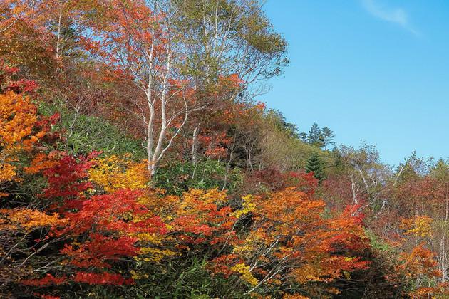 福島県、スカイライン