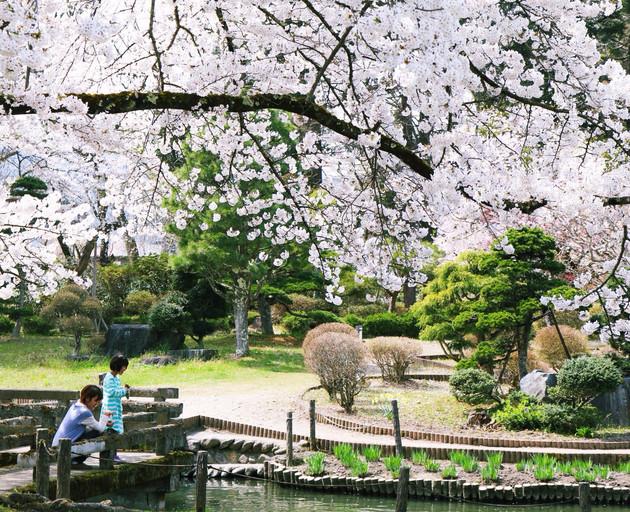福島県、伊佐須美神社