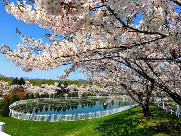 厚田戸田墓苑公園