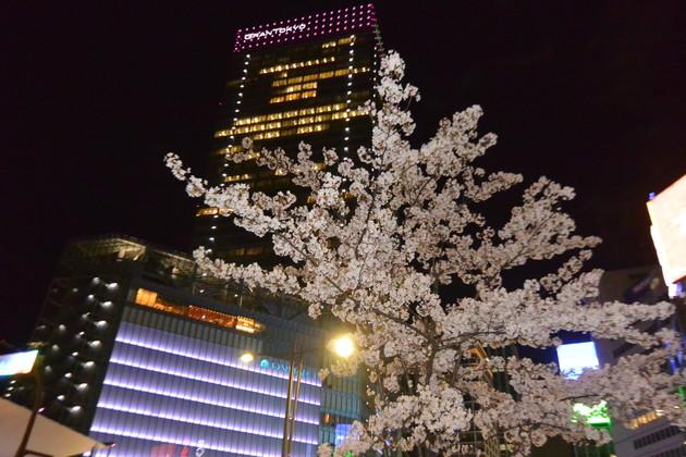 東京都八重洲口