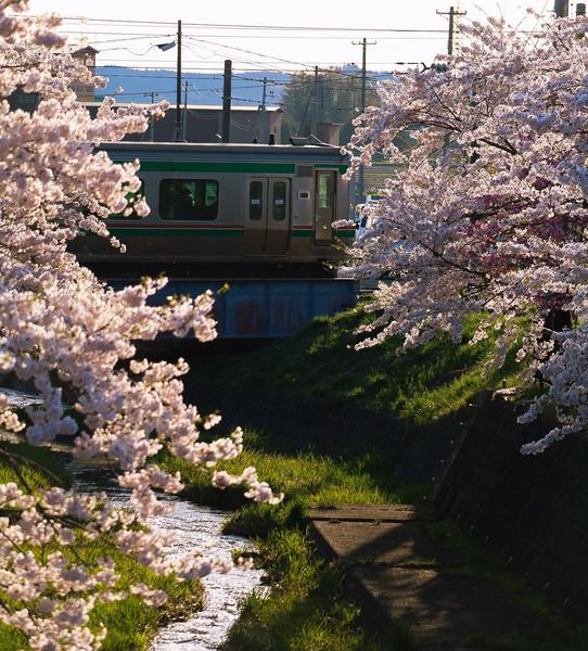 福島県、猪苗代町