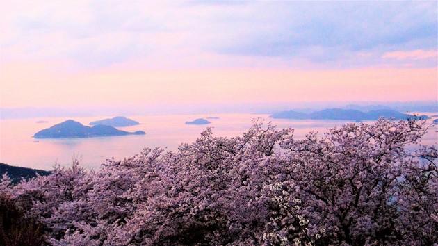 香川県三豊郡紫雲出山