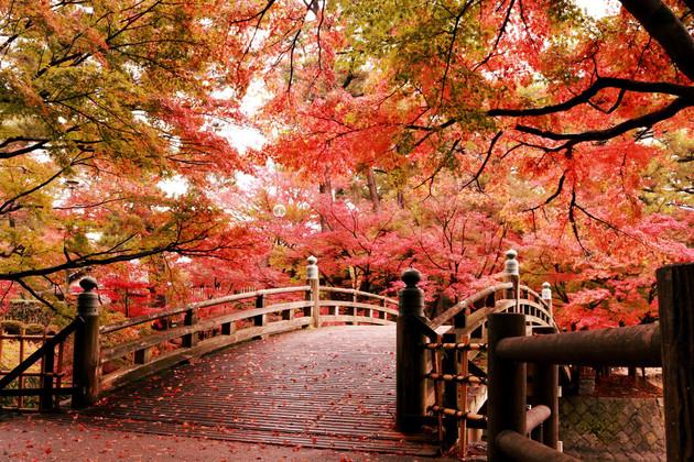 愛知県 岡崎東公園