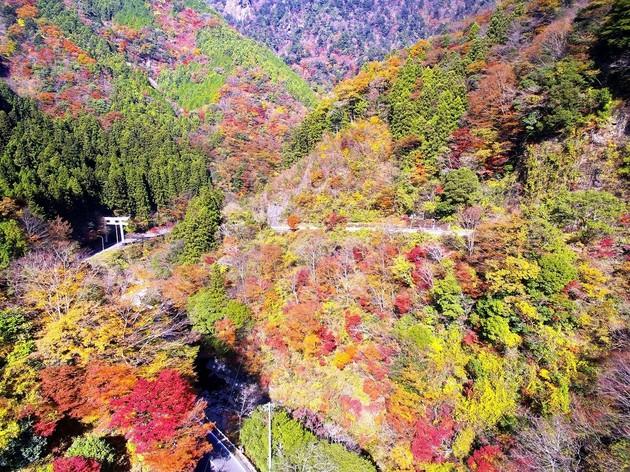 愛媛県久万高原町 スカイライン入口付近