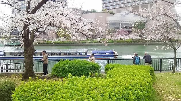 桜ノ宮公園
