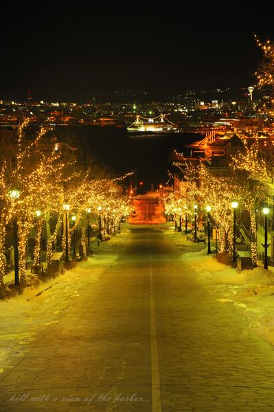 函館(八幡坂)