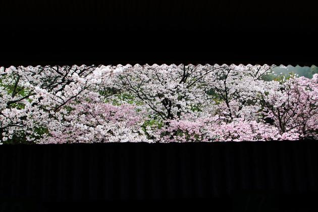 JR四国赤石駅 徳島県小松島市