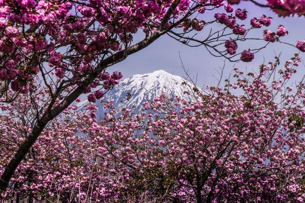 富士宮市北山