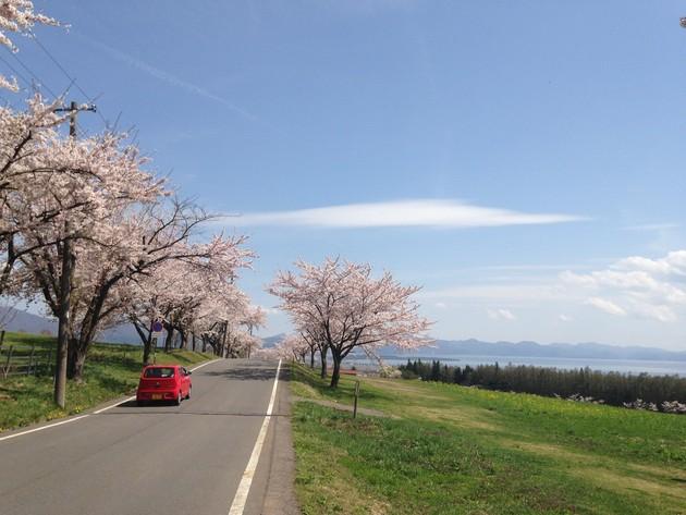 町営牧場、福島県猪苗代町