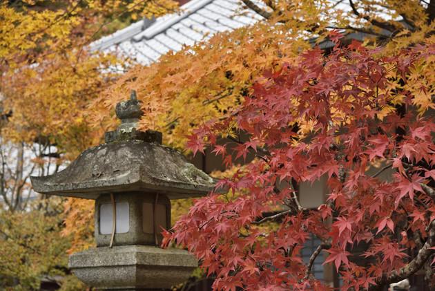 京都南禅寺 最勝院