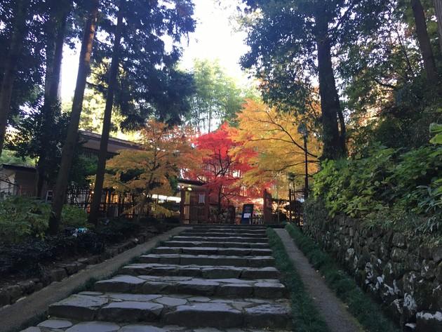 仙台青葉山