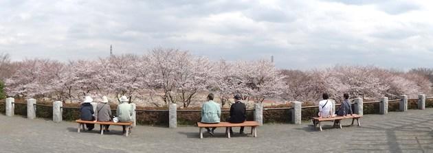 東京都あきる野市秋留台公園
