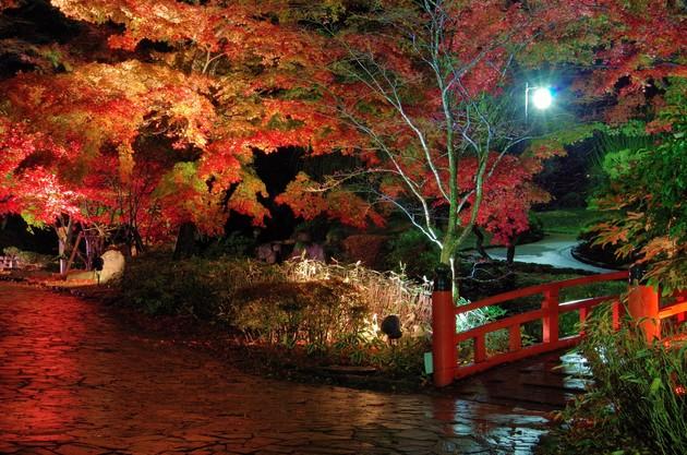 静岡県熱海市熱海梅園