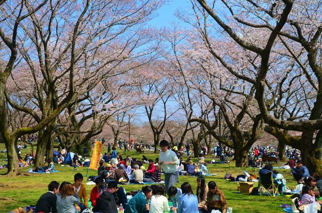 唱和記念公園