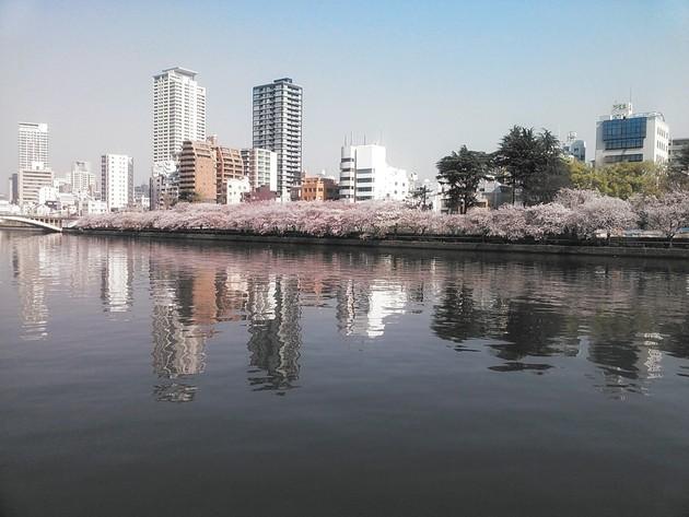 大阪市 大川沿い