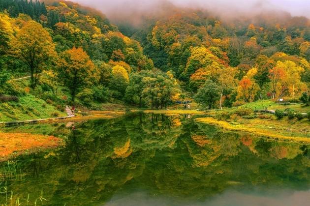 新潟県 湯沢高原