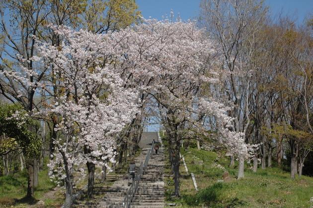 大阪鶴見緑地公園