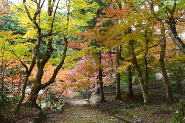 静岡県森町 大洞院