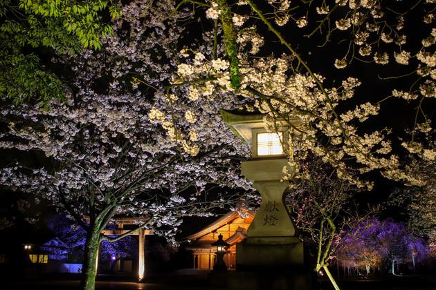 富山県護国神社 富山市