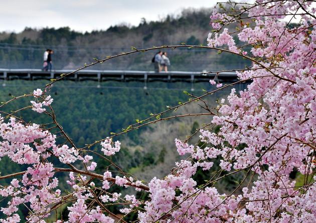 三重県伊賀市 岩倉峡