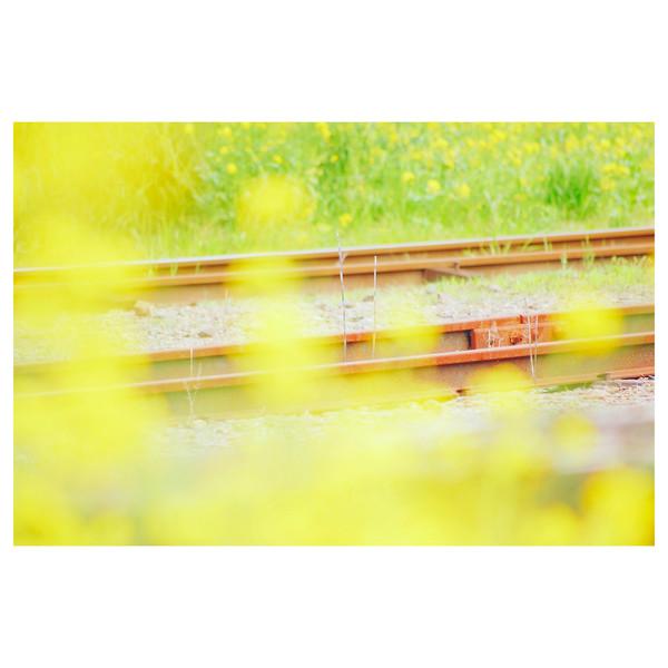 小湊鉄道、里見