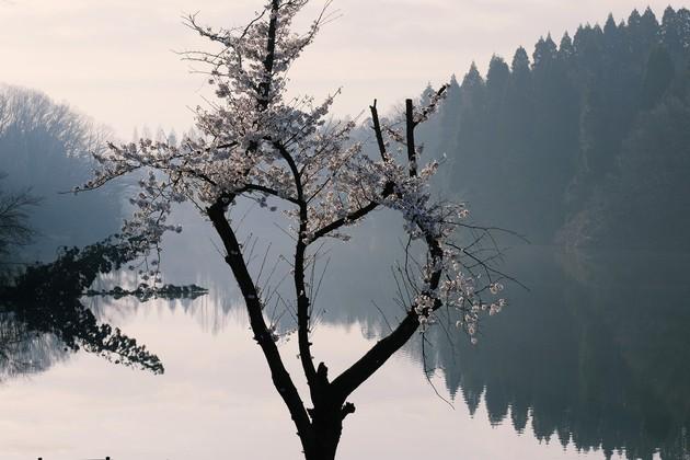 富山県射水市