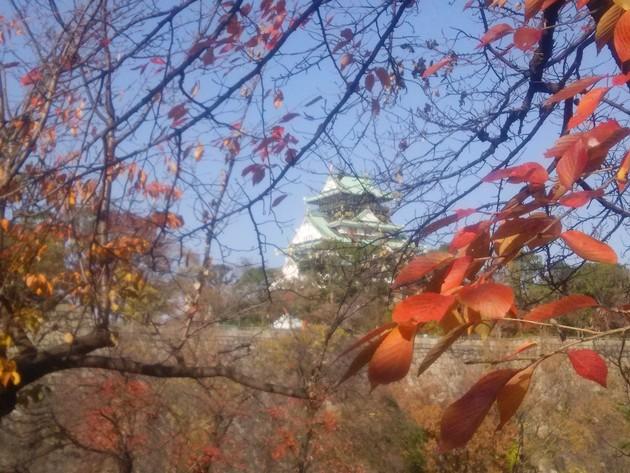 大阪城公園 東堀
