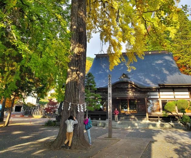 長野県諏訪市仏法紹隆寺