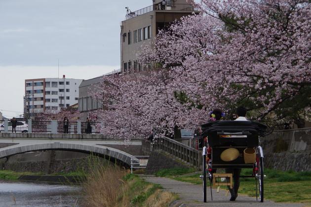 金沢市浅野川