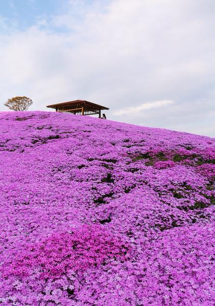 福島県、平田村