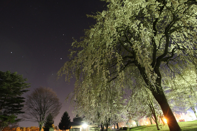 御代田町雪窓公園