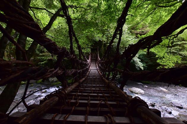奥祖谷二重かずら橋キャンプ場