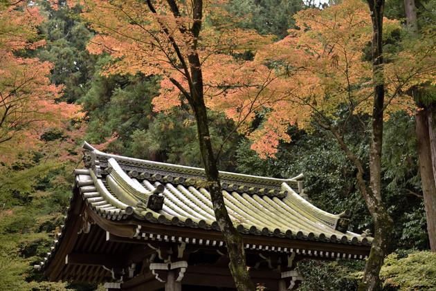 京都今熊野観音寺
