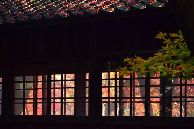千葉県松戸市 本土寺