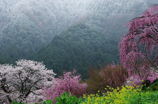 東京都桧原村