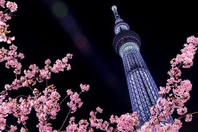 東京都墨田区東武橋