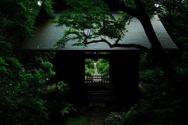 鎌倉 妙法寺