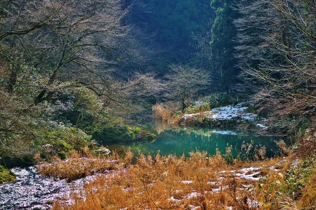 暖冬の大日川