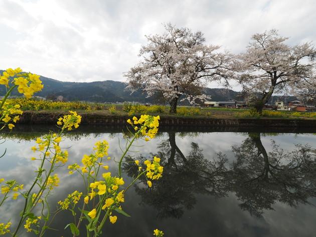 滋賀県 余呉湖
