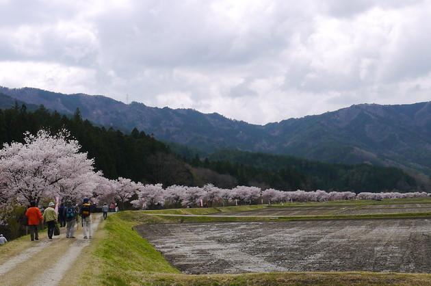 愛知県設楽町