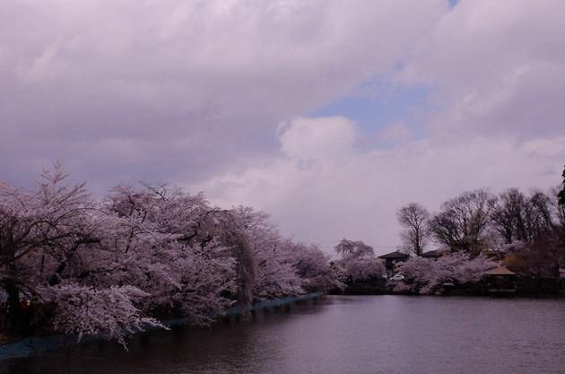須坂市 臥竜公園