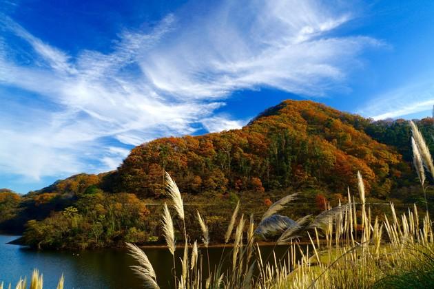 静岡県伊東市松川湖