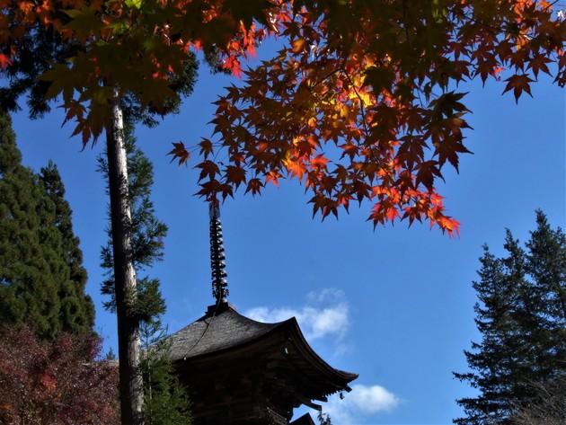 長野県佐久市新海三社神社