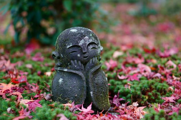 京都 円光寺