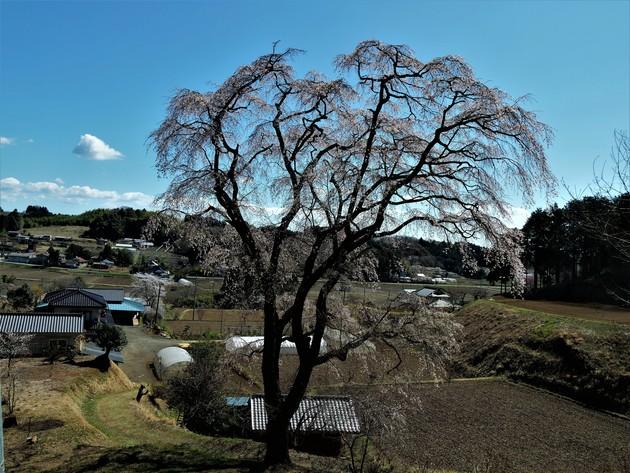 栃木県那須烏山市八ヶ代